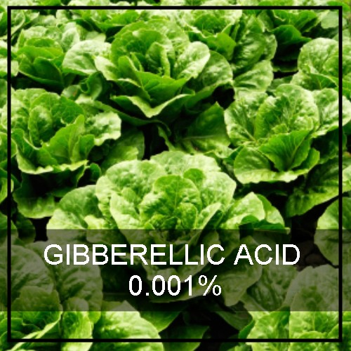 GIBBERELLIC ACID 0.001%
